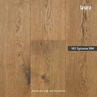101 Sycorax 094